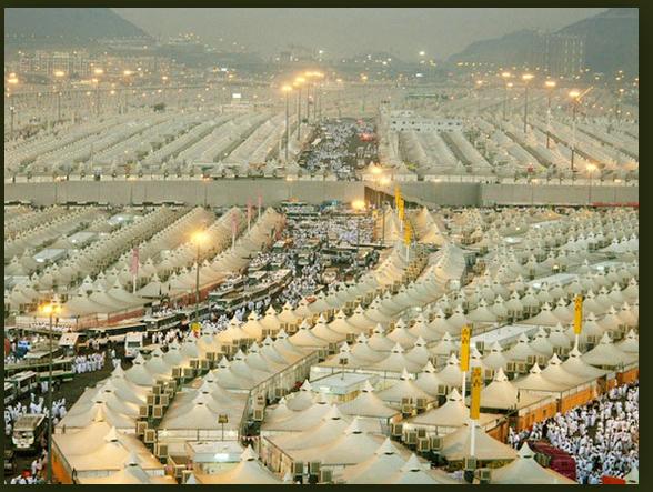 Peraturan Arab Saudi untuk Lindungi Jamaah Haji dan Umrah